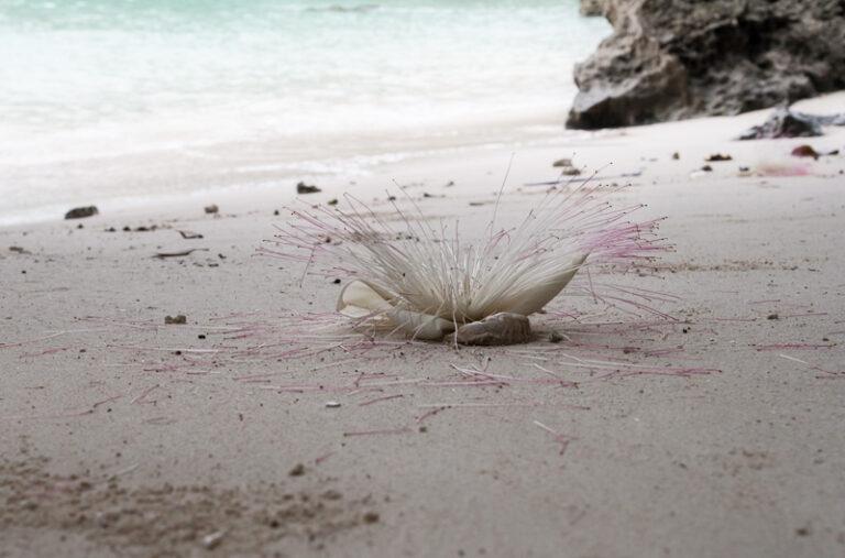 Пляж Боракай белый песок